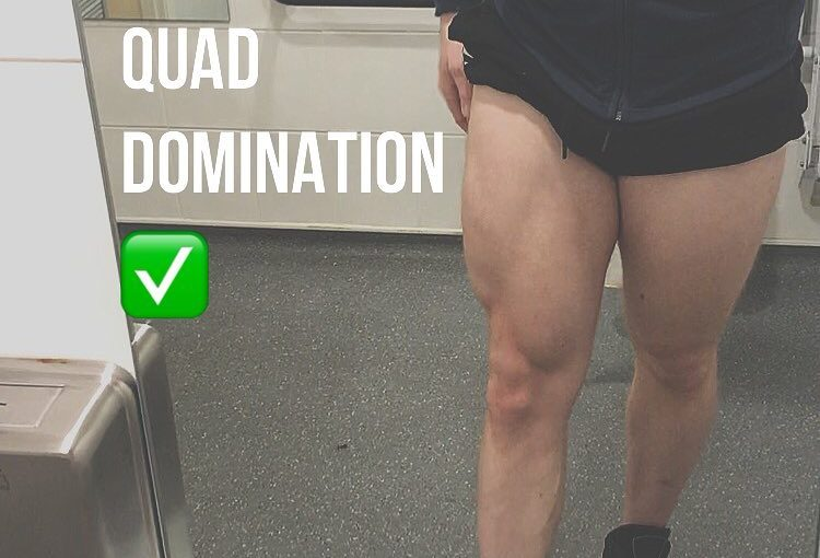 Quad domination … front squats, leg press drop sets, lunges, leg extension ne …