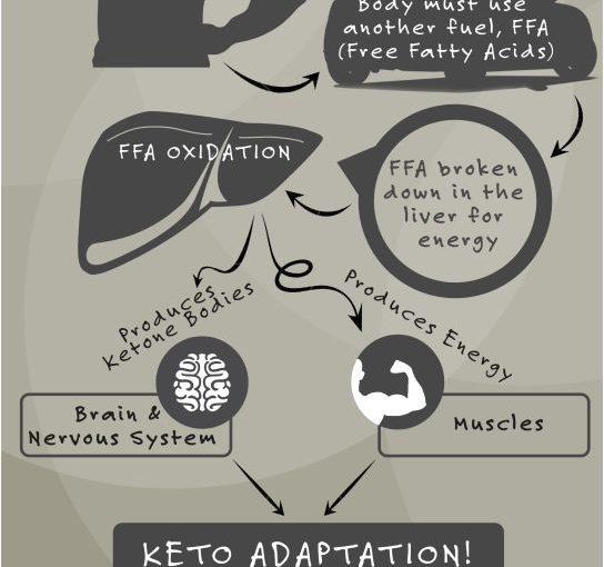 เคโตซิได้อย่างรวดเร็ว – อะไรคืออาหาร ketogenic? อาหาร Ketogenic เป็นวิธีการ …