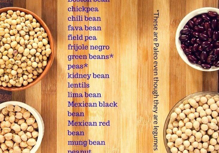 รายชื่อกลุ่มอาหาร – Paleo Diet – ทำไมพืชถึงไม่เป็นประโยชน์ Paleomagazine.com …