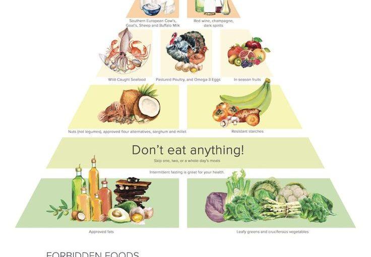 """ดร. ปิรามิดอาหารใหม่ของ Vitality สำหรับพลัง (อาหาร """"The Plant Paradox"""")"""