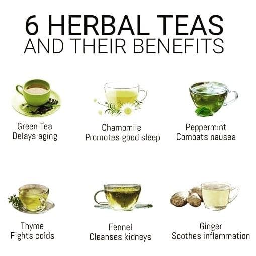 ฉันจะไปดื่มชาสมุนไพรได้อย่างไร . . ชาสมุนไพรไม่ได้เป็นชาจริงพวกเขาเป็นพี่ชาย …