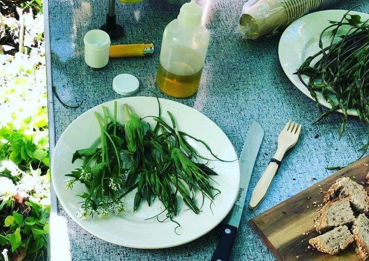 #Outdooractive #outdoorkitchen #herbalfood #leaftoroot #herbs #instafood #freshf …