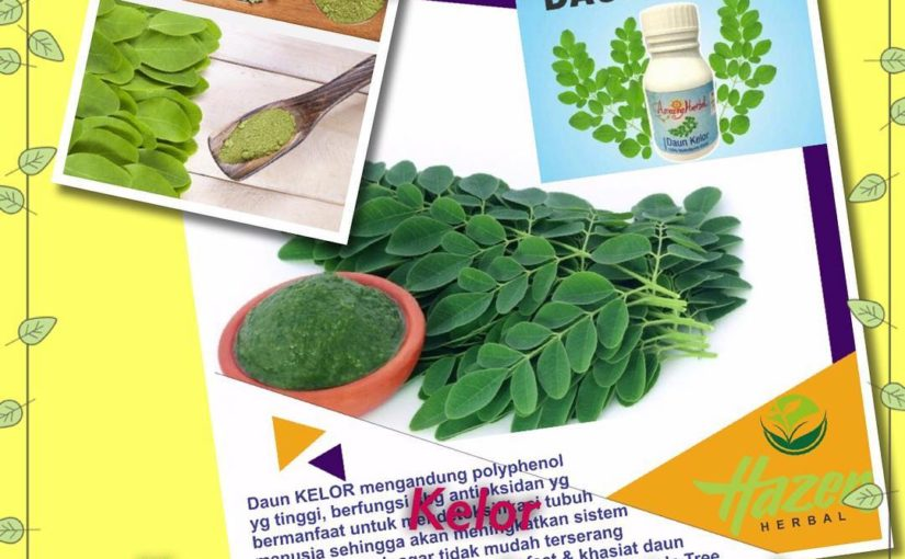 ใบมะรุม … ประโยชน์มากมาย #daunkelor #moringa #moringaoleifera #harigizi #her …