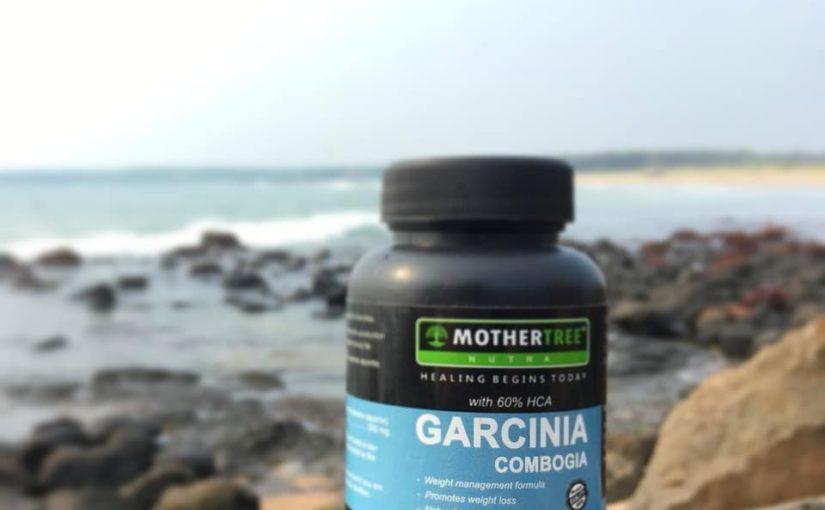 Garcinia cambogia เป็นผลไม้เมืองร้อนดูเหมือนฟักทองเล็กน้อยและเป็นสีเขียว …