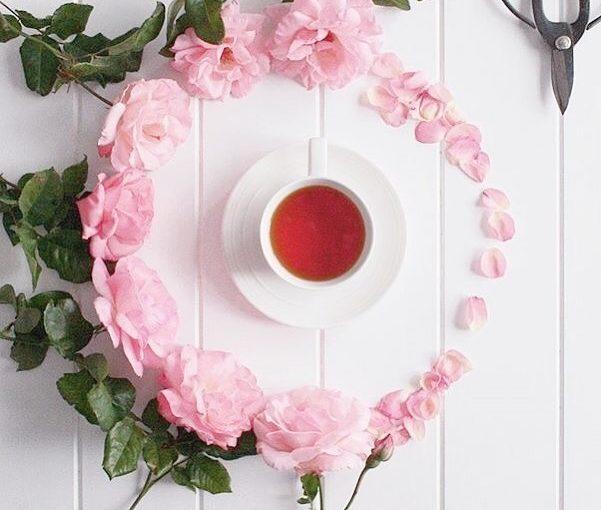 stomach ท้องเต็มไปด้วยความสุข •ชาสมุนไพรยกฝรั่งเศส• ดีต่อกระเพาะของคุณ ดอกไม้ประดิษฐ์ …